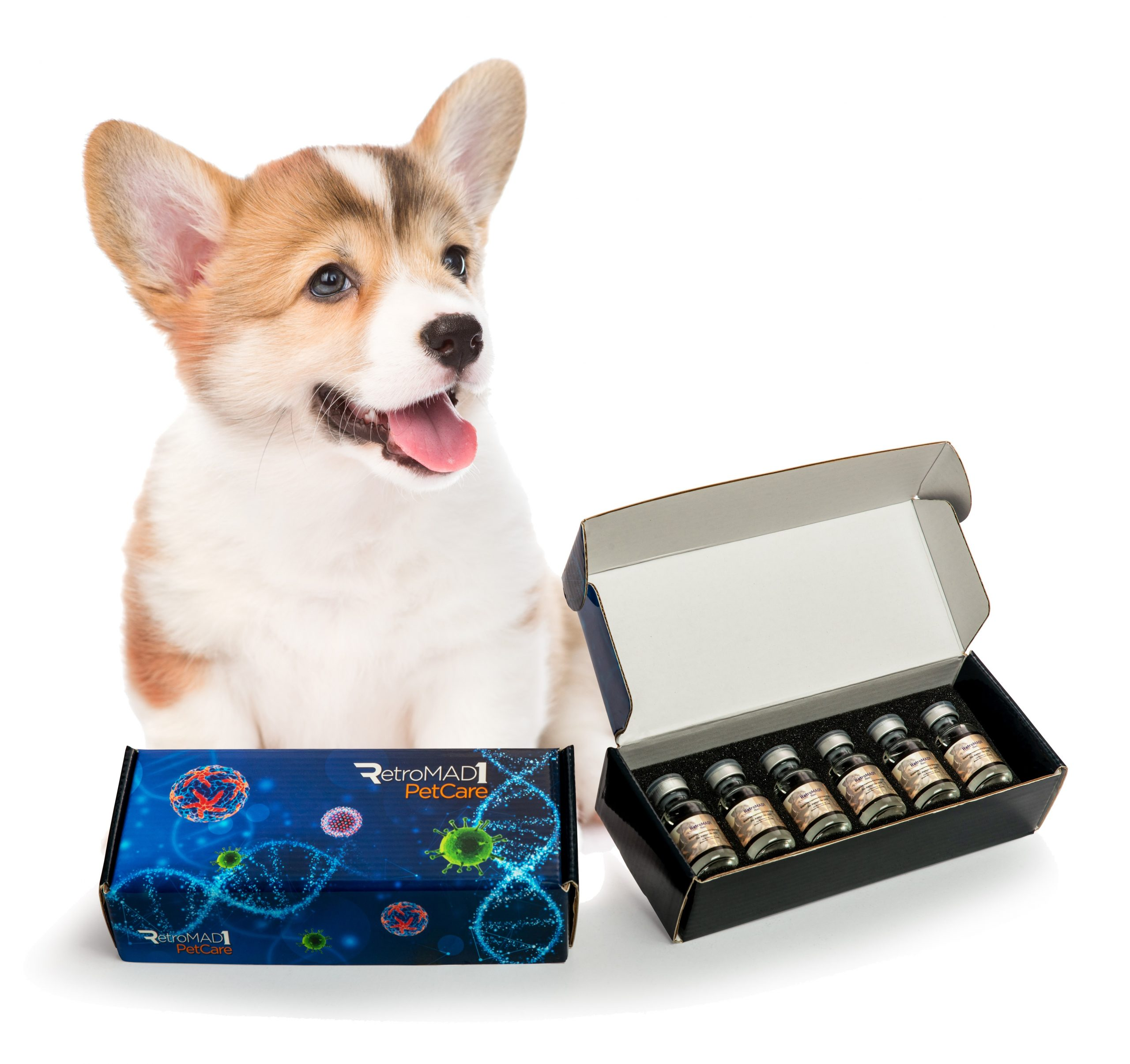 RetroMAD1 box for 15mL (with dog image)